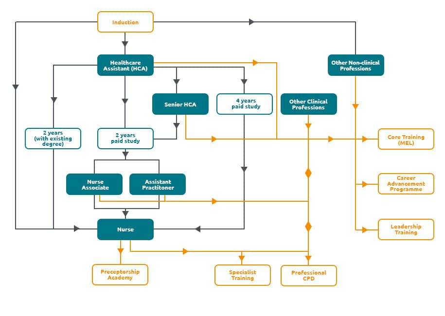 Elysium Career Development Journey
