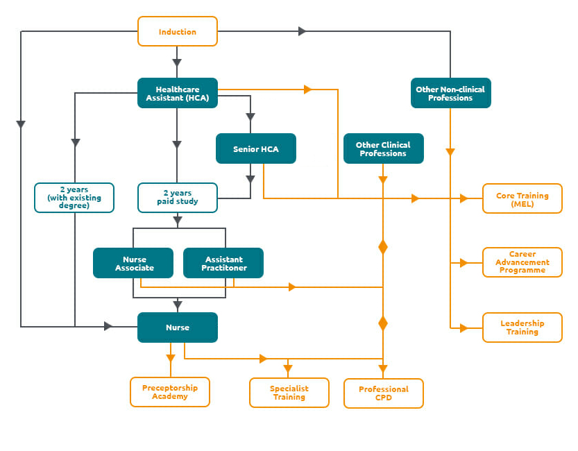Elysium Career Development Employee Journey